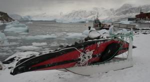 Photo courtesy Chris Paton, Uummannaq, Greenland